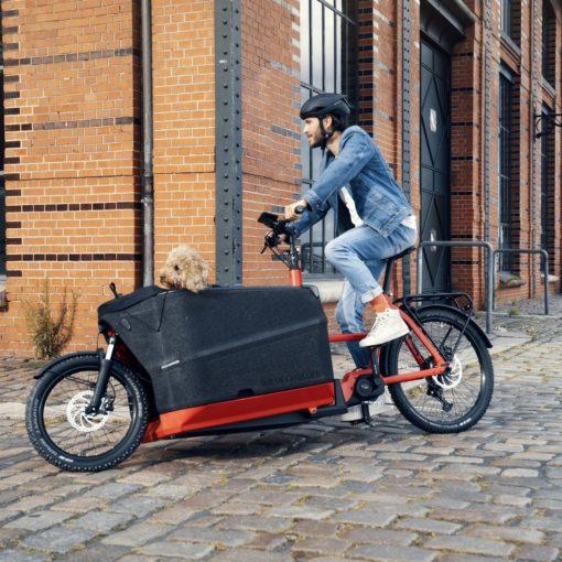 Velo electrique cargo - Riese and Müller Packster 70 - boutique atelier appebike ajaccio en Corse - ebike market 3